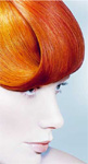 GOLDWELL, hair color.